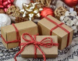 Godina na dar ili još jedna protraćena šansa?