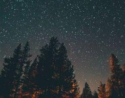 Veliki mesečni horoskop za februar 2019: Jedan znak očekuje veliki poslovni uspeh!