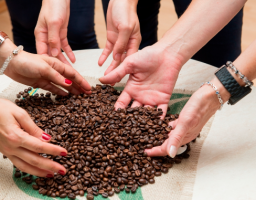 Da li možete da zamislite jutro bez šoljice kafe?
