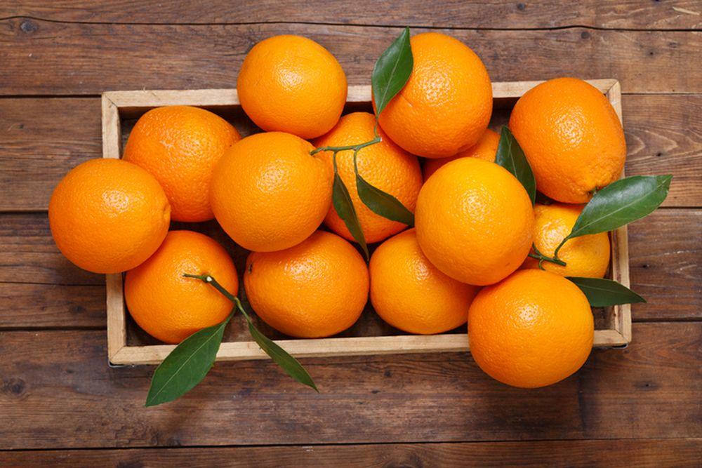 pomorandza lepota
