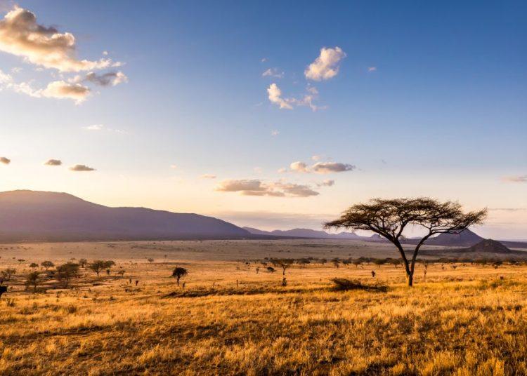 Putovanja Afrika, Lepota i zdravlje
