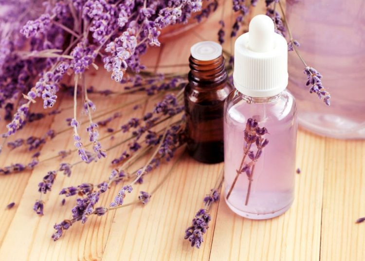Sredstva protiv insekata, Lepota i zdravlje