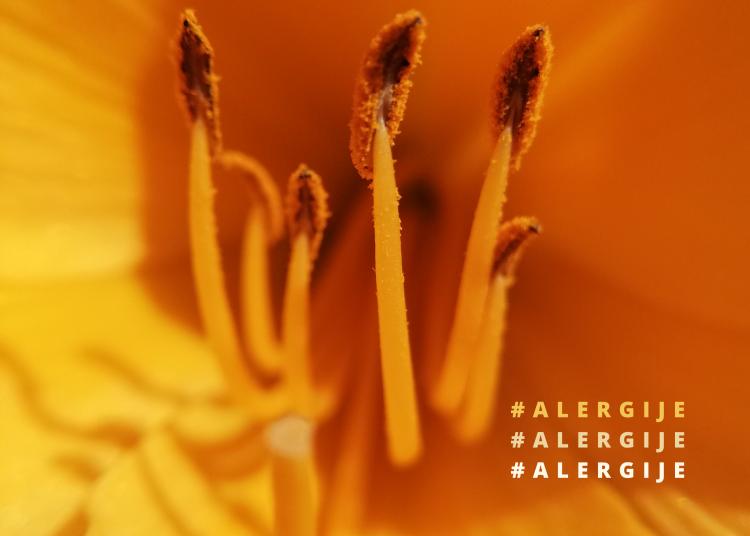 Simptomi alergija